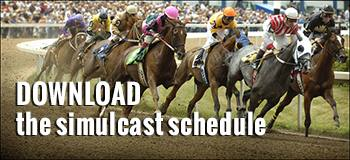 Download simulcast schedule