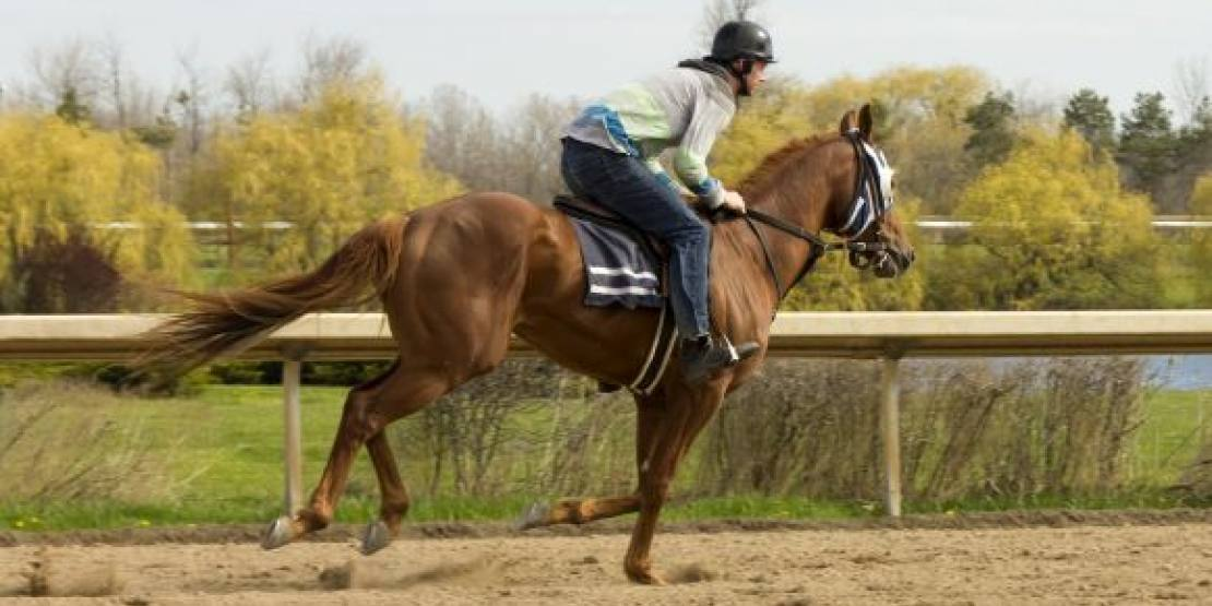 Training Begins for the 2016 Racing Season in Fort Erie