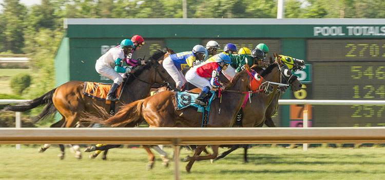 Canada horse racing betting rules penn state vs ohio state betting line
