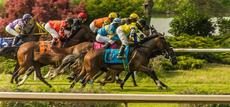 Photo of horses racing.